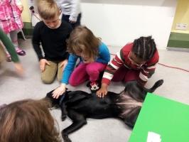 Schulhund_1