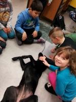 Schulhund_2