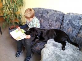 Schulhund_6