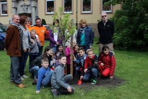 Baumpflanzung_15