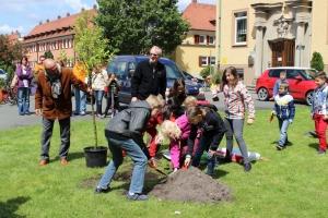 Baumpflanzung_5