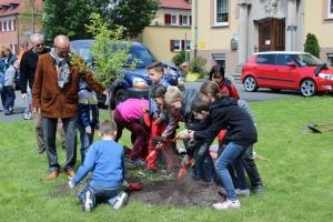 Baumpflanzung_7